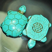 Howlite Turquoise Turtle